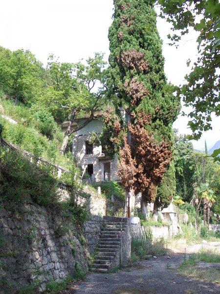 Абхазия. Парк и дворец принца Ольденбургского — фото 5